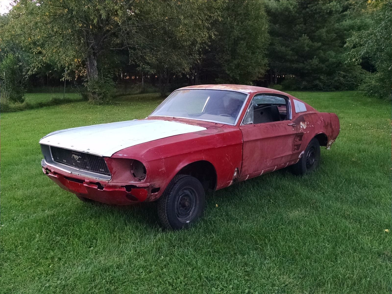 1967 ford mustang fastback project project cars for sale. Black Bedroom Furniture Sets. Home Design Ideas